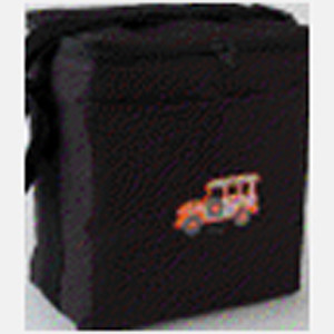 Painted 6 pack Cooler Bag