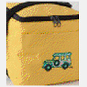 Painted Lunch Cooler Bag 1